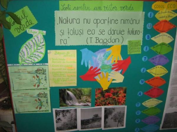 Şcoli pentru un viitor verde