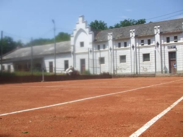 Din nou tenis în Parcul Dendrologic