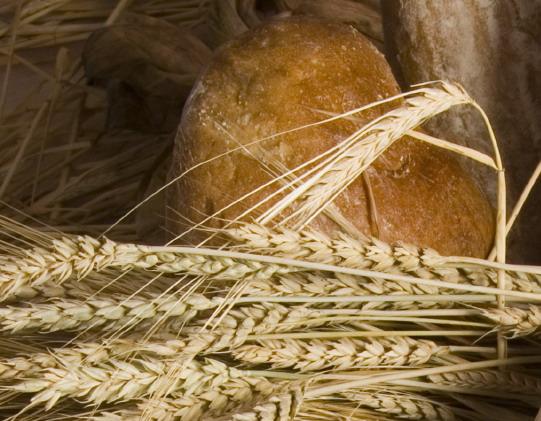 Preţul pâinii româneşti se umflă cu apă de ploaie