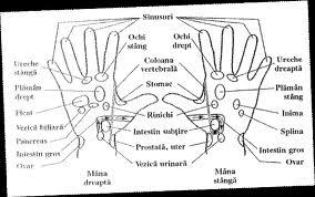 Masajul palmelor- vindecă şi tratează