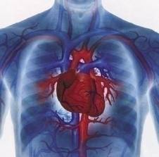 Recomandări pentru sănătatea inimii