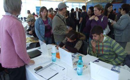 Bursa locurilor de muncă in organizarea AJOFM Satu Mare
