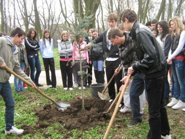 Acţiuni ecologice ale elevilor careieni