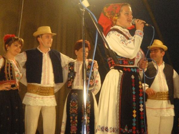 """Vineri începe Festivalul de Folclor al Naţionalităţilor din cadrul """"CAREI FEST 2017"""""""