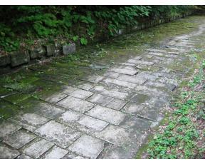 Dacii si romanii au făcut mai multe autostrăzi decât Boc