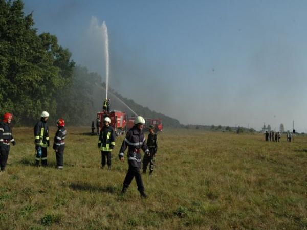 Incendiu în pădurea de la Tătărăşti