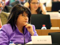 """Rovana Plumb: """"Numărul claselor de salarizare din sistemul bugetar va fi redus de la 111 la 5″. Situaţia din Republica de la Carei"""