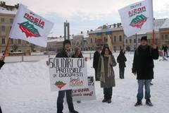 Protest extrem la Ministerul Mediului: Ecologistii s-au legat de caloriferul lui Borbely