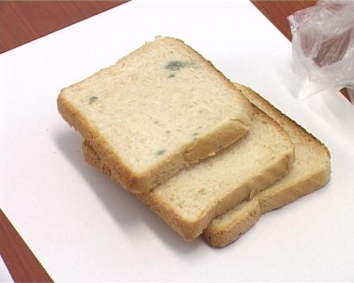 A cumpărat pâine cu mucegai