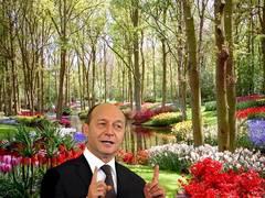 Noua Republică a lui Traian Băsescu