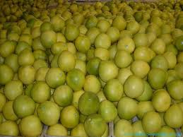 Patru tone de pomelo,posibil contaminate au fost sechestrate la Cluj