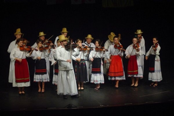 Concert Iedera