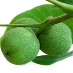 La ce sunt bune nucile verzi
