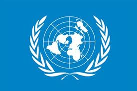 Incredibil: Cine era de fapt unul dintre experții ONU
