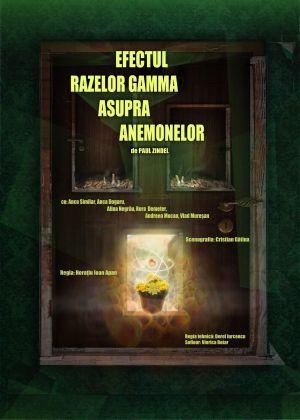 O nouă premieră la Teatrul de Nord
