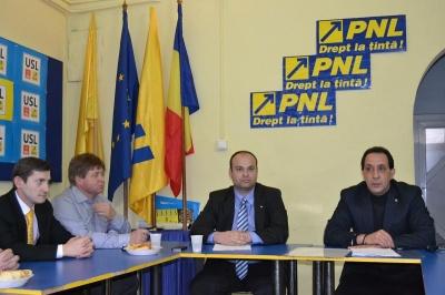 PNL Carei promite demonstraţii dacă se continuă tăierile de copaci