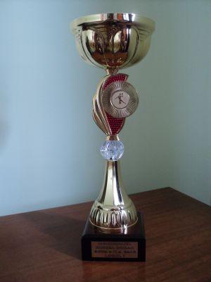 """Memorialul Mircea Dohan""  la handbal la a doua ediţie"