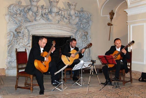Clipe de neuitat la concertul Trio Andrei