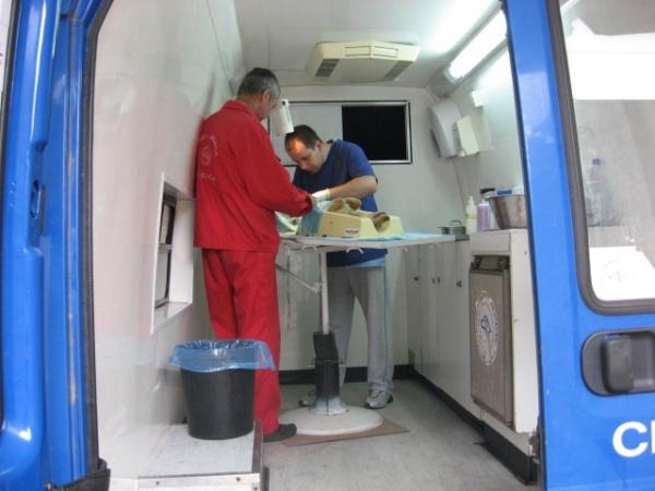 Servicii de sterilizare gratuită