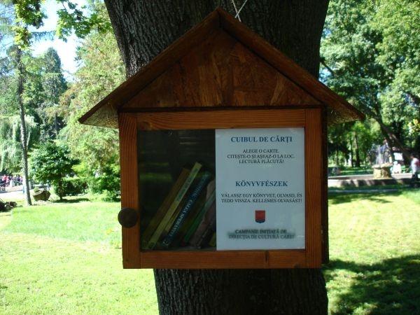 """Relansarea campaniei de lectura in aer liber – """"Cuibul de cărți"""""""