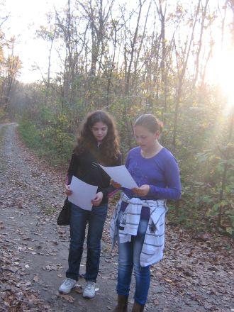 Pe urmele… toamnei la pădurea Foieni