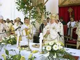 Cardinalul Lucian solicită clarificări