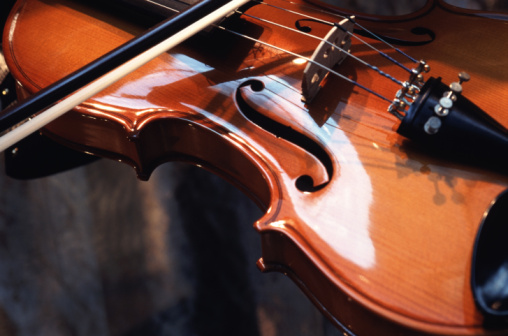 O istorie a viorii