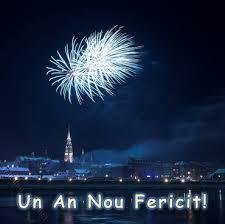 Mesajul Consiliului Judeţean Satu Mare cu ocazia Anului Nou