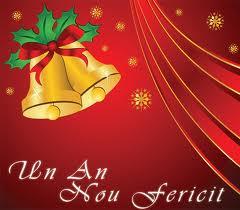 Mesajul conducerii Instituţiei Prefectului Satu Mare cu ocazia Anului Nou