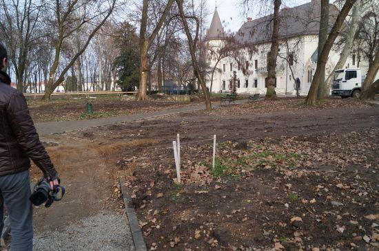 Centru de Afaceri şi 140 de parcări în Parcul Dendrologic. Un proiect al fostei consiliere Veress