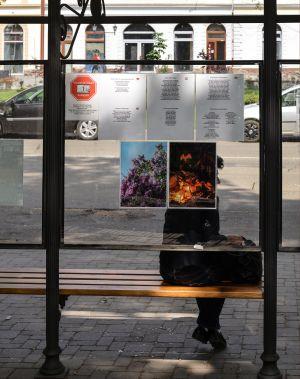 Minutul de cultură continuă în stațiile de autobuz din Carei