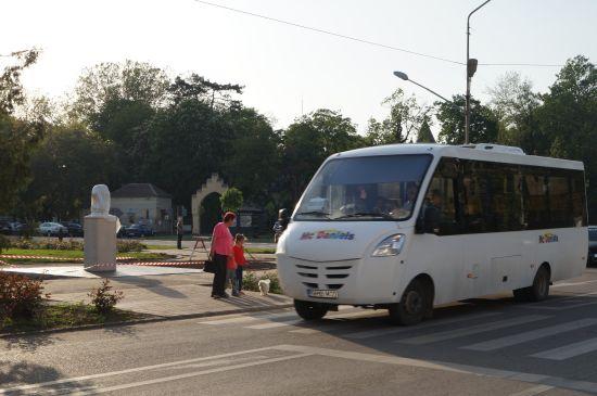 ABUZ în serviciu şi dispreţ total faţă de istoria României din partea primarului Careiului
