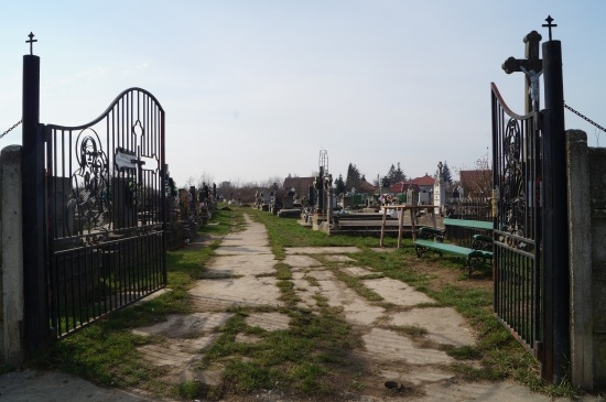 Cimitirul Rozalia din Carei