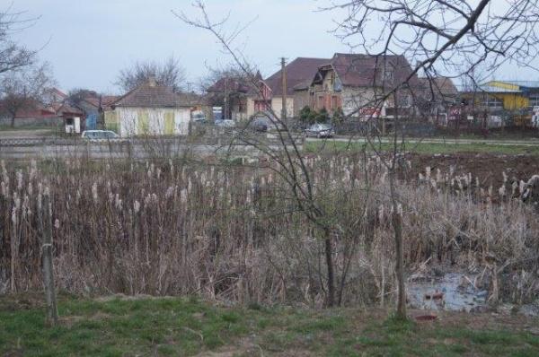 Amenajare parc de  agrement  SOMOS  în  municipiul Carei