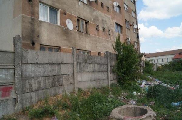 Primăvara la Depozitul de gunoaie dintre Teatru şi Primăria municipiului Carei