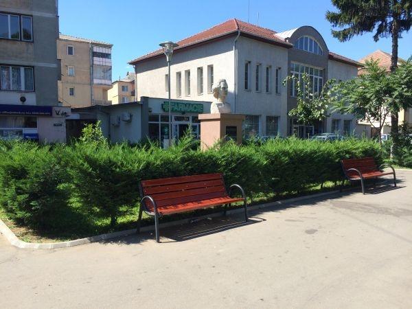 Cititorii careieni semnalează: Mihai Eminescu primit la Marghita nu şi la Carei