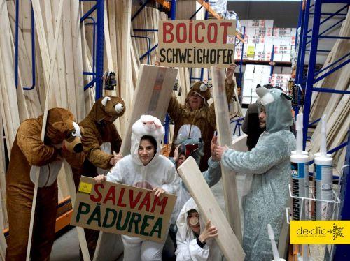 Protestul   ,,animalelor sălbatice,,   împotriva tăierilor ilegale de pădure