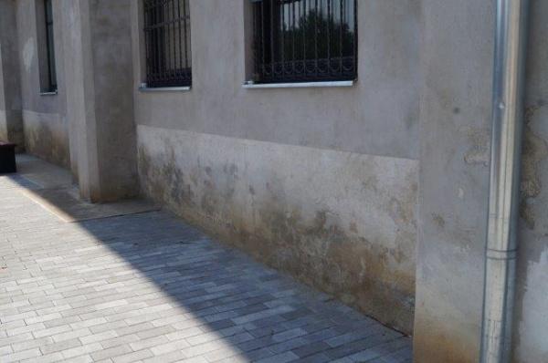 BOMBĂ! Igrasia a ieşit de după primele 2 milioane de euro băgate în clădirea Primăriei Carei