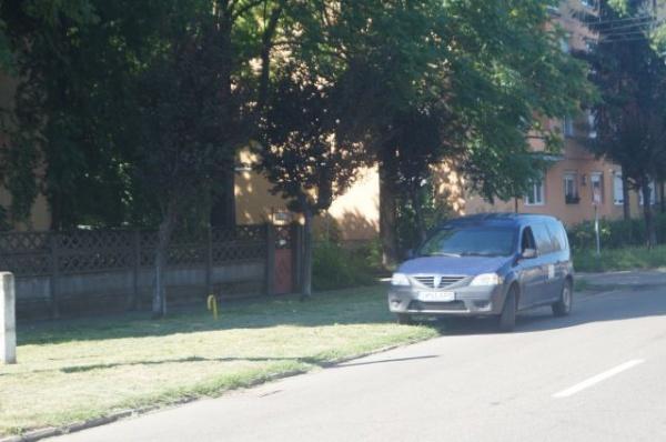 Maşina Apaserv parchează la Carei pe spaţiul verde