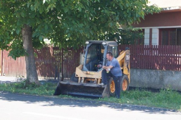 Pentru cine se pregătesc contractele de întreţinut spaţii verzi la Carei?