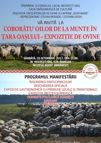 """,,Coborâtu' oilor de la munte în Ţara Oaşului"""" – Expoziţie de ovine"""