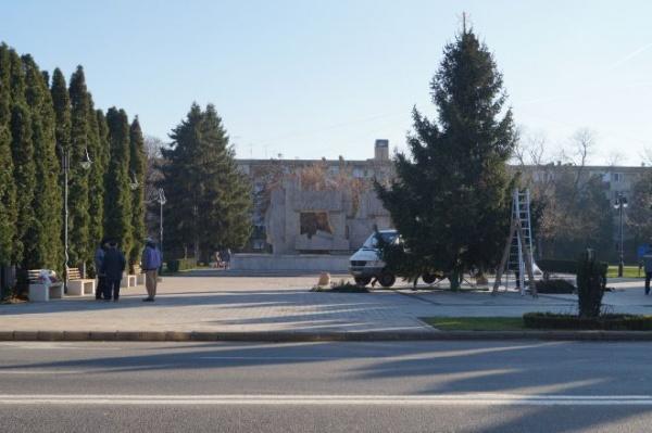 Primăria Carei pregăteşte Ziua Naţională cu brad de Crăciun în faţa Monumentului Ostaşului Român