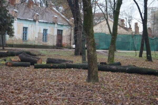 Pentru cine se taie copacii din parc?