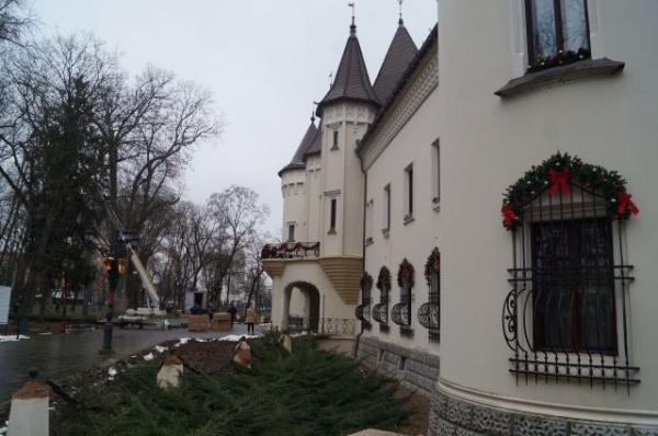 Primarul nu vrea taxă de intrare la Castelul Karolyi