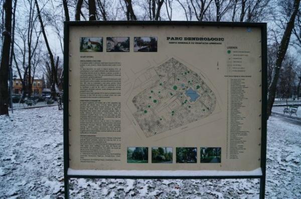 În atenţia Gărzii Naţionale de Mediu. Panoul informativ din parcul dendrologic Carei cuprinde arborii cu valoare deosebită care au fost tăiaţi