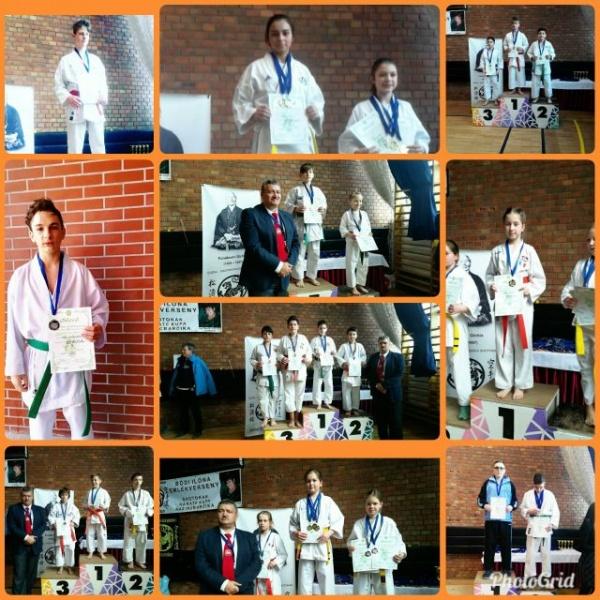 Salbă de medalii pentru karateka careieni la Memorialul Bódi Ilona