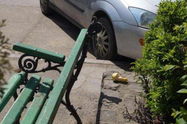 Avem nevoie de coşuri de gunoi stradale la Carei?