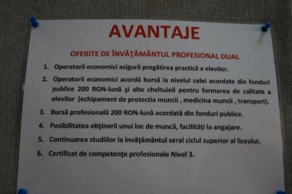 Fără învăţământ profesional tip DUAL în limba română la Carei