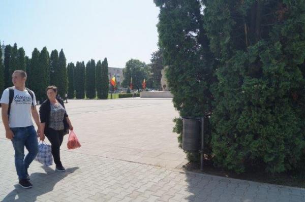 Degajaţi Monumentul Ostaşului Român de peretele forestier. Primăria şi Consiliul Local Carei refuză răspuns la adresa oficială