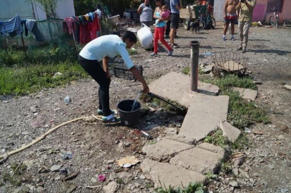 Oameni şi câini la acelaşi robinet de apă la Carei